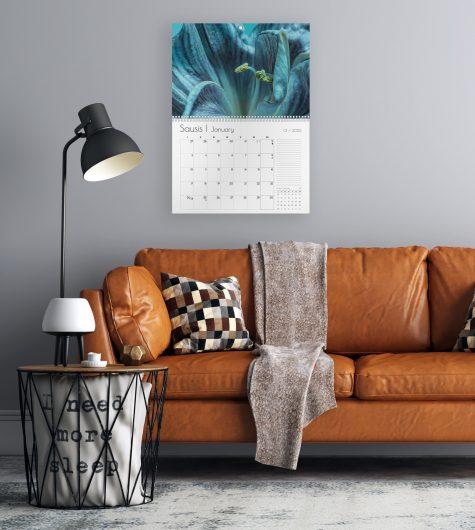 Sieninis kalendorius VAKARO PASLAPTIS